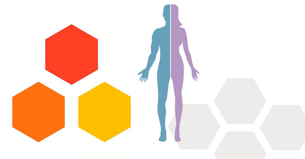 Связь между экспрессией генов и выживаемостью
